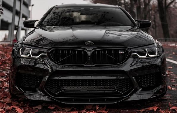 Picture BMW, Light, Predator, Black, Autumn, Face, Sight, F90