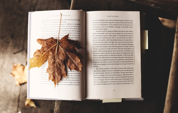 Picture Autumn, Wallpaper, Mood, Text, Book