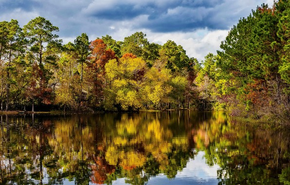 Picture autumn, forest, the sky, water, the sun, clouds, trees, reflection, river, USA, Texas