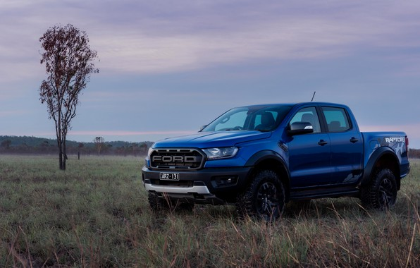 Picture field, blue, Ford, the evening, Raptor, pickup, 2018, Ranger
