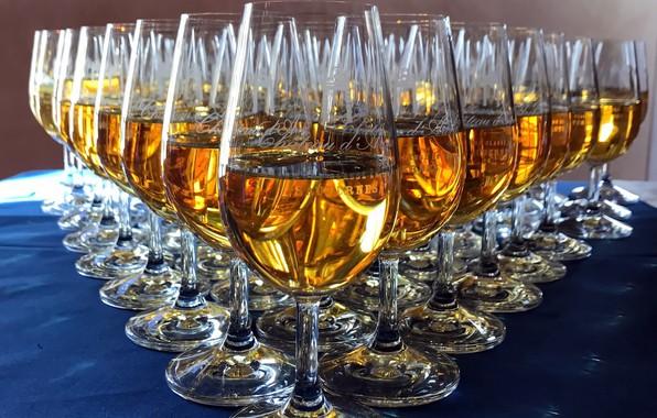 Picture background, wine, glasses