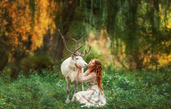 Picture forest, girl, nature, animal, deer, red, Anastasia Barmina