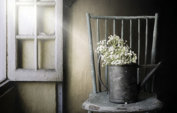 Picture flowers, window, chair