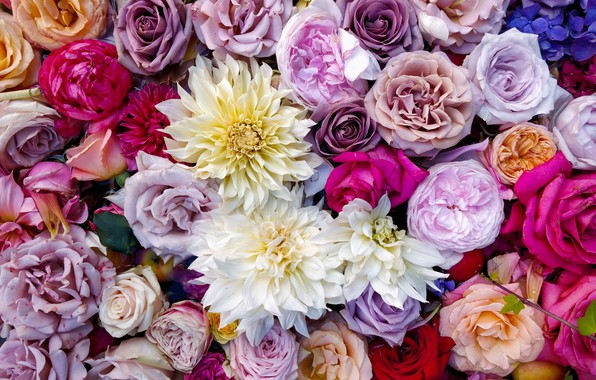 Picture colorful, flowers, bouquet, roses, composition, multicolored, Dahlia's, UHD wallpaper