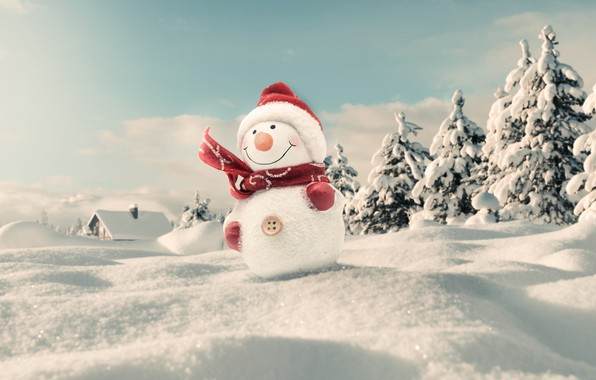 Picture photo, Winter, Snow, Hat, New year, Scarf, Snowman
