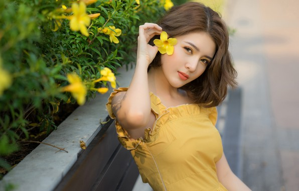 Picture summer, look, girl, flowers, yellow, face, pose, street, hand, portrait, the fence, brown hair, Asian, …