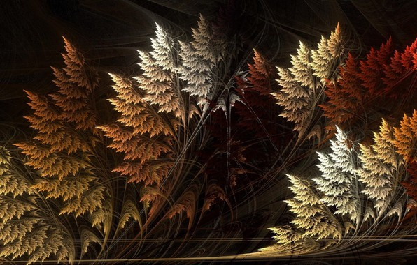 Picture line, abstraction, the dark background, Wallpaper, curves, fractal, grass, saver, autumn fantasy