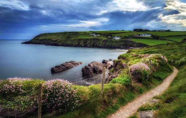 Picture sea, summer, the sky, flowers, path