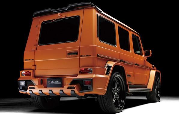 Picture Mercedes - Benz, W463, Black Bison Edition