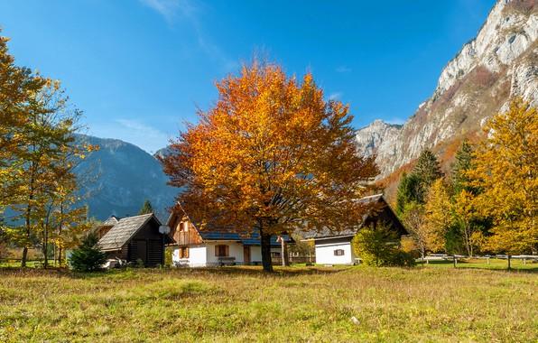 Picture autumn, forest, the sky, grass, the sun, trees, mountains, rocks, houses, Slovenia, Bohinj