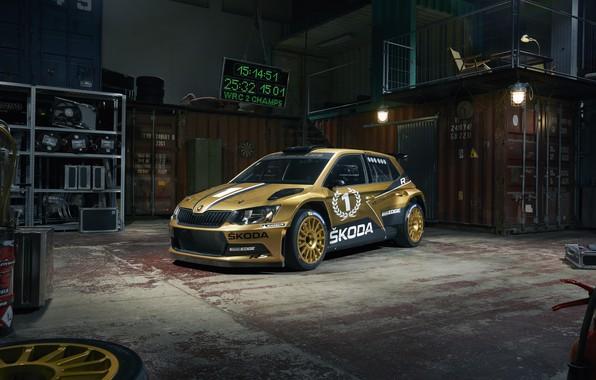 Picture rally, WRC, skoda, fabia
