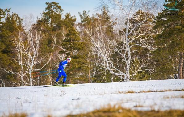 Picture ski, ski cross, ski race