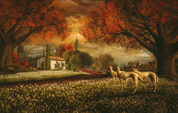 Picture autumn, dogs, the sky, clouds, landscape, sunset, flowers, nature, bike, comfort, house, Park, rendering, mood, …