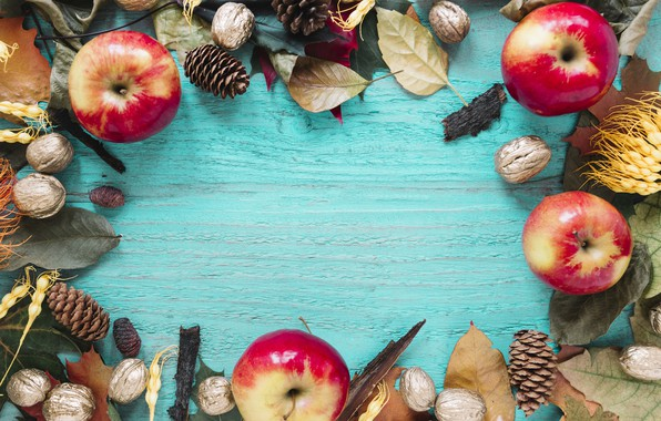 Picture autumn, leaves, background, tree, apples, colorful, nuts, bumps, wood, background, autumn, leaves, autumn, maple
