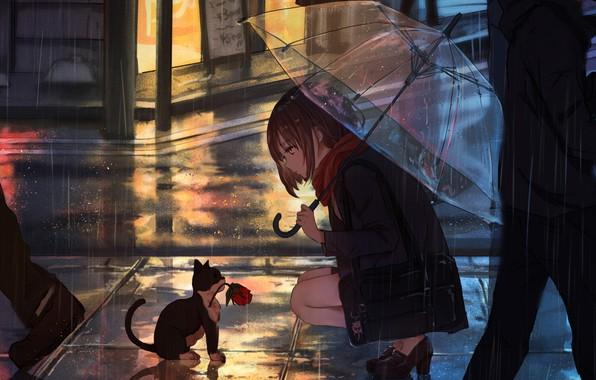 Picture Girl, Anime, Flower, Rain, Umbrella, Cat