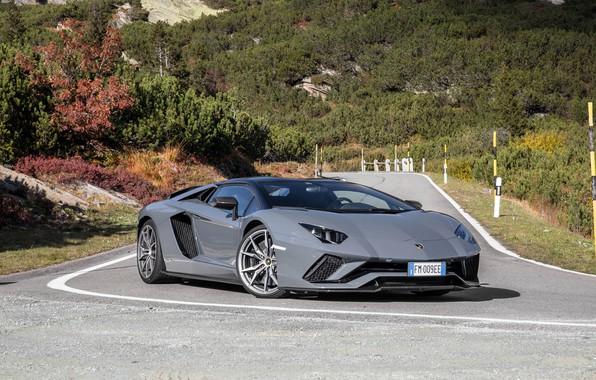 Picture Lamborghini, Aventador, gray