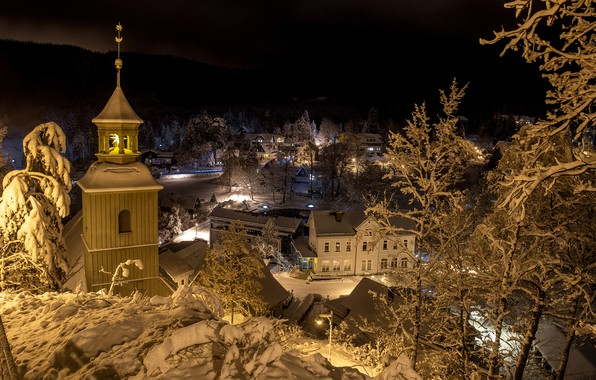 Picture winter, forest, snow, trees, night, lights, home, Germany, lights, the view from the top, Oybin