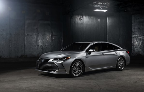 Picture lamp, Toyota, 2018, Avalon, Limited Hybrid