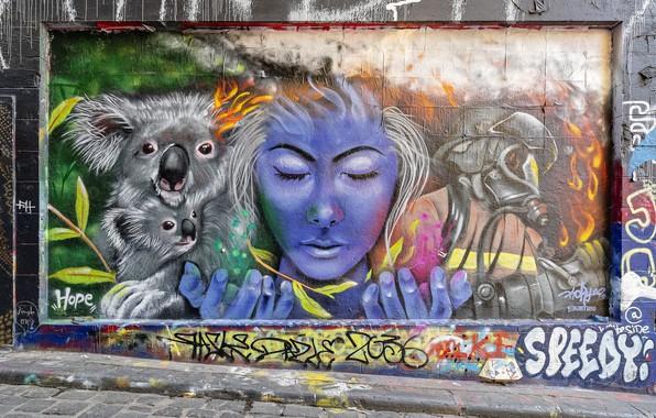 Picture Graffiti, Melbourne, Australia, Street Art, Hosier Lane