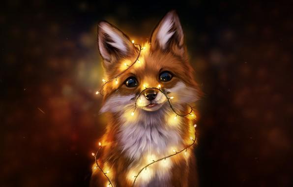 Wallpaper Fox, Eyes, Face, Fox, Art, Art, Eyes ...