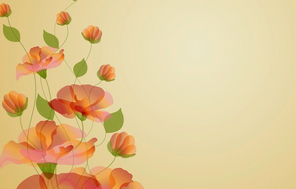 Picture flowers, background, postcard, template, blank