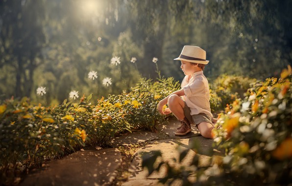 Picture summer, flowers, boy