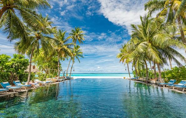 Picture the sky, palm trees, the ocean, pool, The Maldives, The Indian ocean