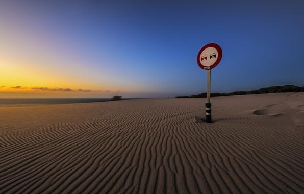Picture sea, beach, night, sign