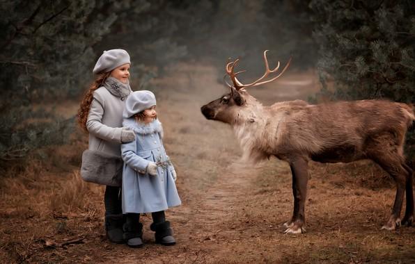 Picture children, animal, girls, deer, Valentine Ermilova