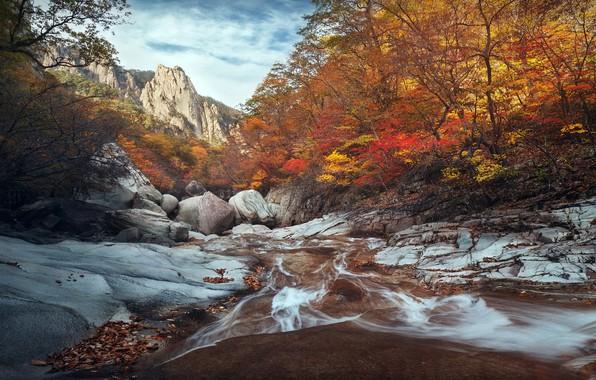 Picture South Korea, autumn, River, Seoraksan national park