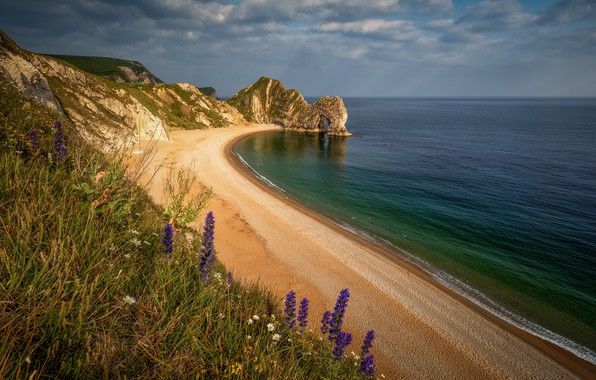 Picture sea, beach, grass, clouds, flowers, mountains, rock, shore, coast, surf, sandy