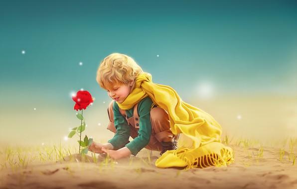 Picture flower, rose, boy, child, photoart, Ксения Лысенкова, Маленький принц