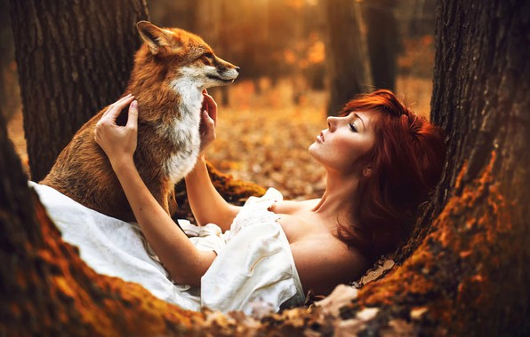 Picture Fox, white, dress, Autumn, autumn, tree, Woman, sitting, Redhaired, redhair