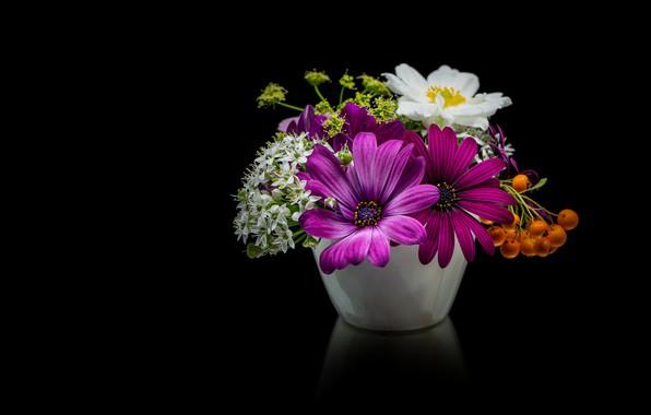 Picture flowers, berries, bouquet, white, black background, Rowan, anemone, lilac, composition, vase, osteospermum