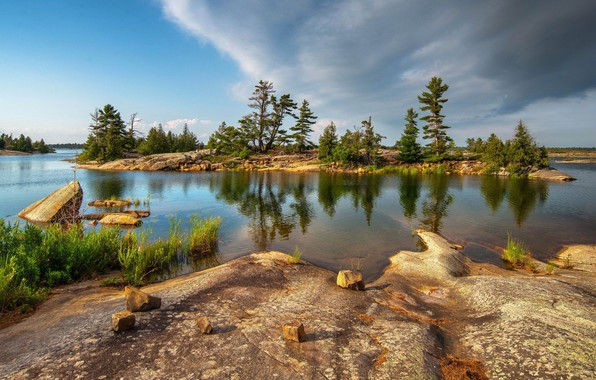 Picture trees, landscape, nature, lake, beauty