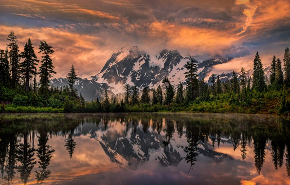 Picture trees, landscape, sunset, mountains, nature, lake, reflection, ate, USA, Shuksan, Perry Hoag, Shuksan