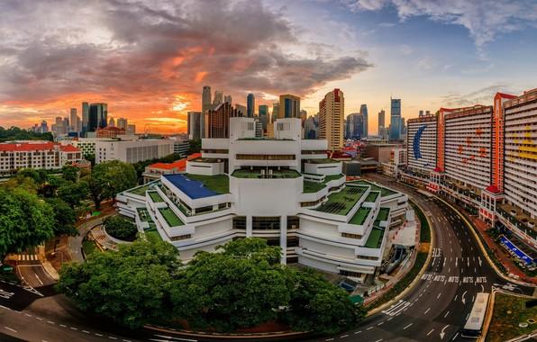 Picture the city, building, Singapore, Singapore