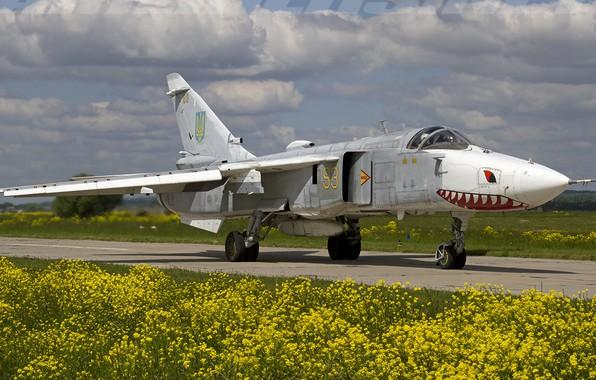 Picture Flight, Bomber, Su-24, Ukraine Air Force, ATO