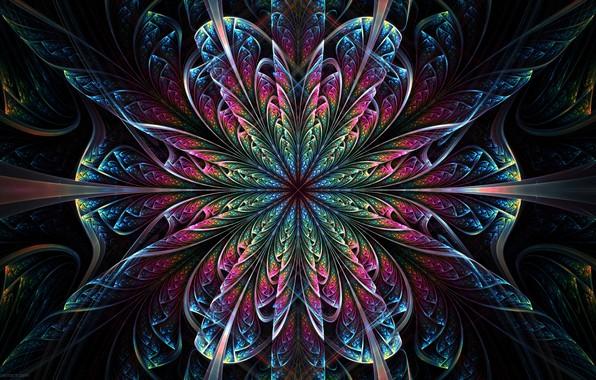 Picture flower, pattern, symmetry