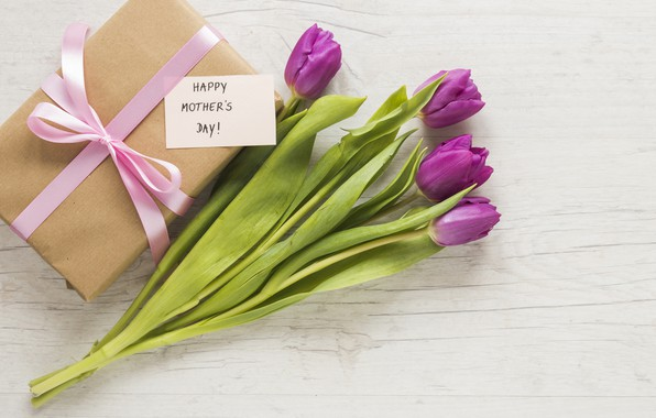 Picture flowers, gift, bouquet, tulips, happy, flowers, tulips, purple, gift box, mother's day