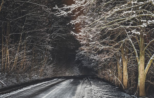 Picture winter, road, night