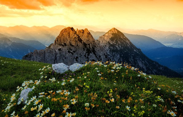 Picture grass, landscape, flowers, mountains, nature, Alps, meadows