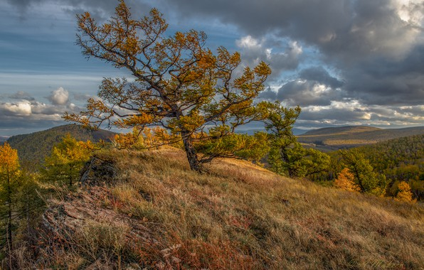 Picture autumn, clouds, trees, landscape, nature, hills, slope, Alexander Makeev