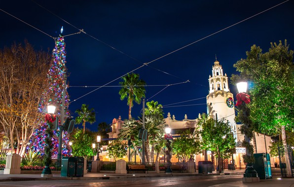 Picture photo, Design, Night, The city, CA, New year, Tree, USA, Street lights, Disneyland. Park