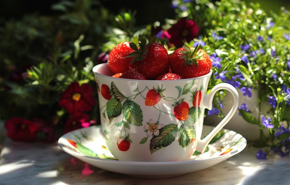 Picture summer, light, flowers, table, mood, food, cute, strawberry, mug, Cup, still life, flowers, saucer, berries, …