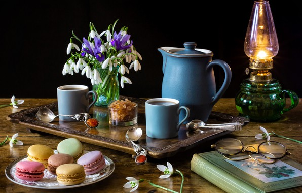 Picture flowers, style, lamp, coffee, bouquet, glasses, snowdrops, book, mugs, still life, irises, tray, coffee pot, …