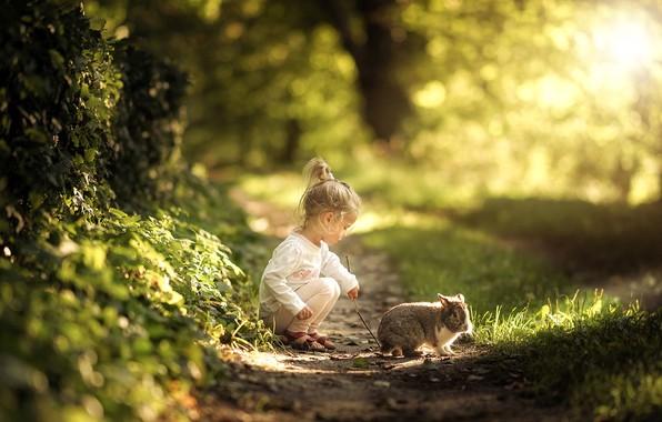 Picture summer, grass, nature, animal, rabbit, girl, path, baby, child, Radoslaw Dranikowski