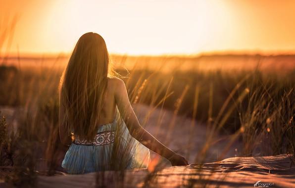 Picture girl, the sun, hair, back, Antonio Conde