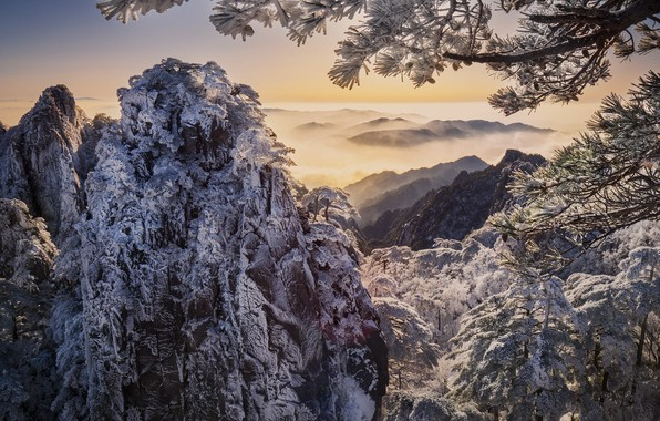 Picture winter, clouds, snow, trees, landscape, mountains, branches, nature, fog, rocks, China, pine
