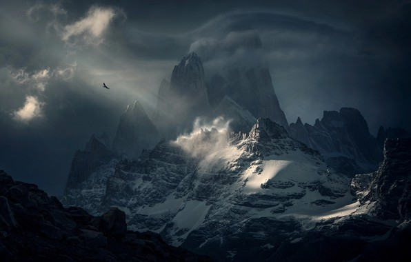 Picture the sky, clouds, mountains, bird, South America, Patagonia, Fitzroy, Condor